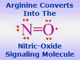nitric_oxide